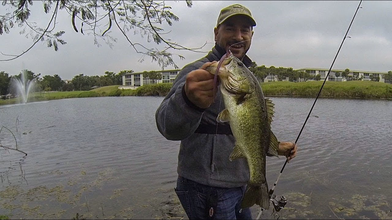 finesse bass fishing in a florida golf course pond cold