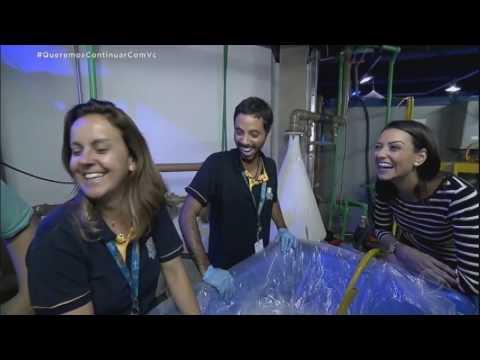 Aquário Brasileiro Busca Tubarões Na Indonésia