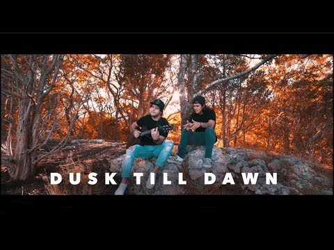 ZAYN - Dusk Till Dawn ft. Sia (Tyler & Ryan Cover)