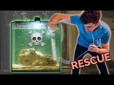 SAVING MY FRIEND'S FISH TANK!!! ☠️- (back From The Dead)