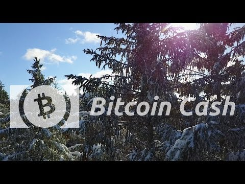 Bitcoin Cash | P2P Electronic Cash System