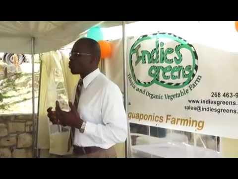 Indies Greens Aquaponics Training Center