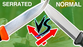 Can a Serrated Knife be BETTER Than a regular Knife!?