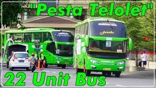 PESTA TELOLET 22 UNIT BUS!!, Menyambut HUT Gudang Garam ke 59 | Ada Pandawa 87 AVANTE