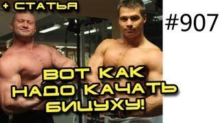 Юрий Спасокукоцкий и Денис Гусев. Тренировка бицепса методом