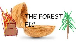 The Forest Fic in a nutshell