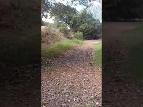 Rio de Bela Vista de Covas BA secou