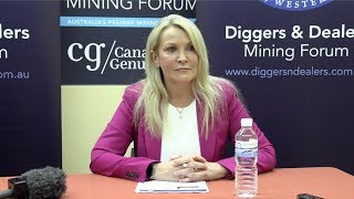 Fortescue Metals Ceo Elizabeth Gaines: Latest Company News And The Iron Ore Market