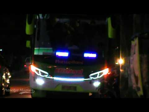 [OM TELOLET OM!!]Klakson tolelet + strobo + suara sirine Bus Efisiensi Jaya