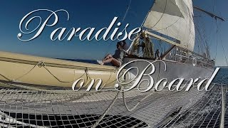 Our Star Clippers Cruises: Paradise on Board