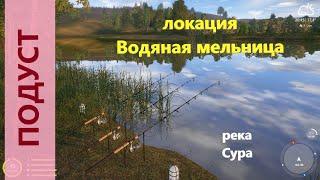 Русская рыбалка 4 река Сура Подуст у буйков