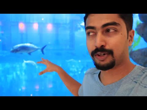 DUBAI MALL &  CHEESECAKE FACTORY   ദുബായ് മാള് ആൻഡ് ചീസ് കേക്ക് ഫാക്ടറി