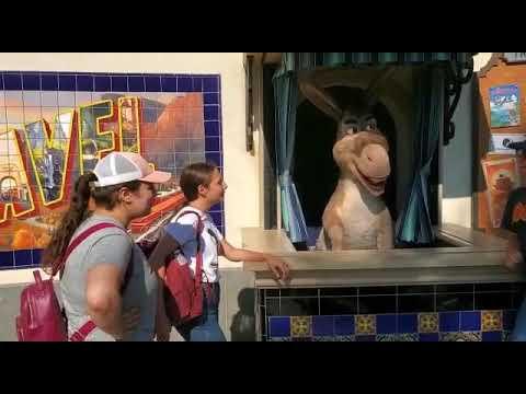 Donkey From Shrek Speaks Armenian At Universal Studios.