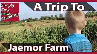 Visiting Jaemor Farm In Alto, GA