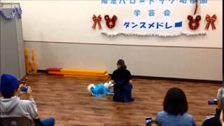 北海道犬「まぅ」の阪急ハロードッグ学芸会2014。 「アナと雪の女王」Yu...