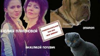 Интервью с владелицей бордоского дога и шотландской вислоухой кошки Анжеликой ПОПОВИЧ