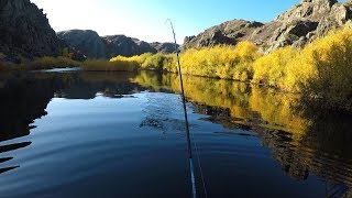 Рыбалка в каньонах. Красивый пейзаж. Крушение моего дрона)