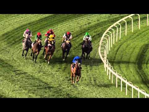 DWCC Meydan Racecourse 03-03-16, Race 4 Balanchine Sponsored by Emirates Skywards