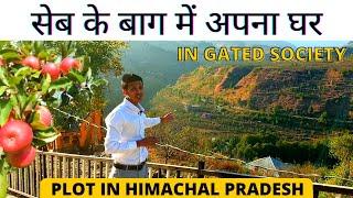 Plot for Villa near Shimla Himachal Pradesh at 11,000 per sq. yards   Best View   Property Round  
