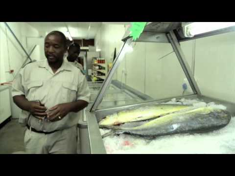 South African Heroes - Marine Compliance Officers (2 mins)