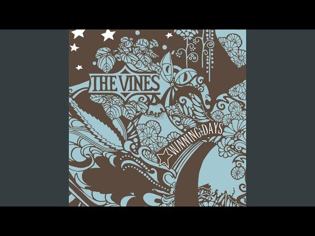 The vines fuck the world lyrics pics 870