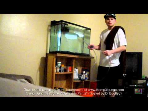 Setting Up 55 Gal Cichlid Tank | 30 G To 55 G | How To/Tips