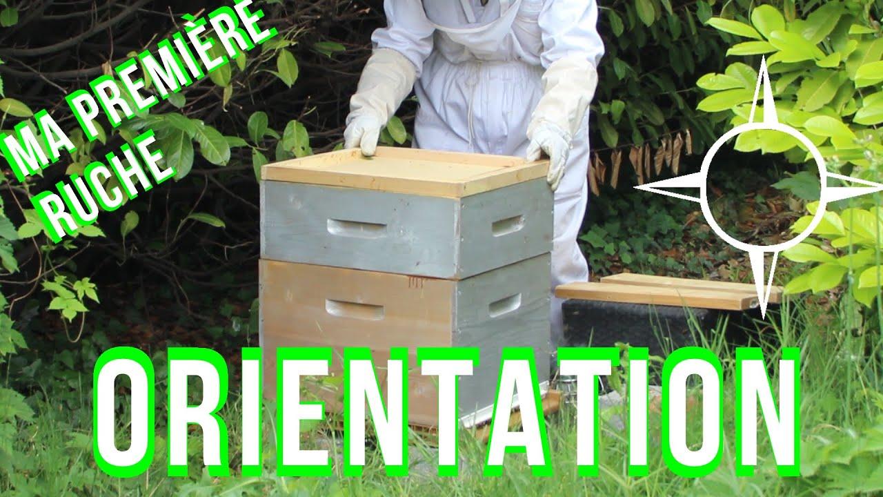 ma 1 re ruche installation et orientation de la ruche l 39 abeille verte youtube. Black Bedroom Furniture Sets. Home Design Ideas