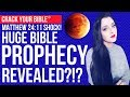 🌕 (Matthew 24!) HUGE BIBLE PROPHECY REVEALED!