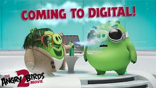 The Angry Birds Movie 2 | Coming home to Digital!