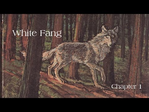 Jack London's: White Fang chapter 1