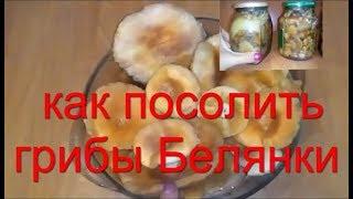 как посолить сохранить грибы консервирование рецепт засолки