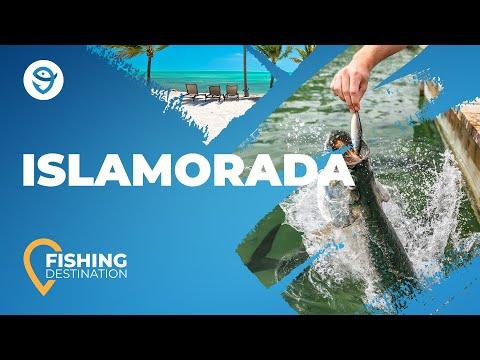 Fishing In Islamorada: All You Need To Know | FishingBooker