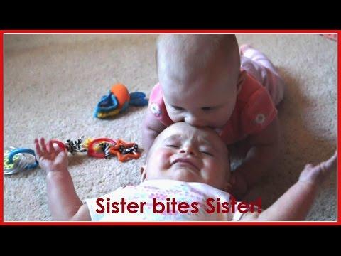Sister bites Sister! (November 19, 2015)