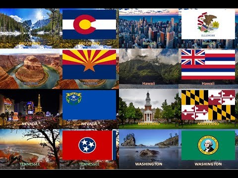 50 States of America ( USA ) - All Flags with landmark or la
