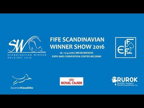 FIFE SCANDINAVIAN WINNER SHOW 2016 -LIVE