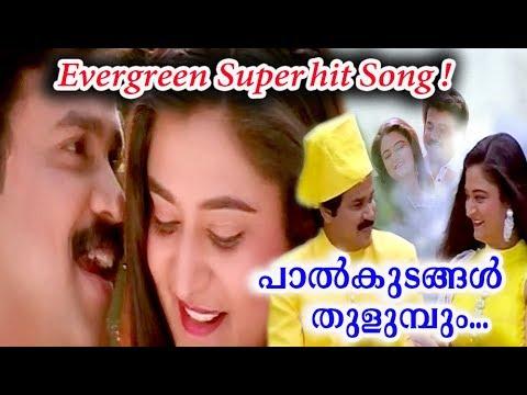Palkudangal Song Lyrics - പാൽക്കുടങ്ങൾ തുളുമ്പും -  Pranaya Nilavu Malayalam Movie Songs Lyrics