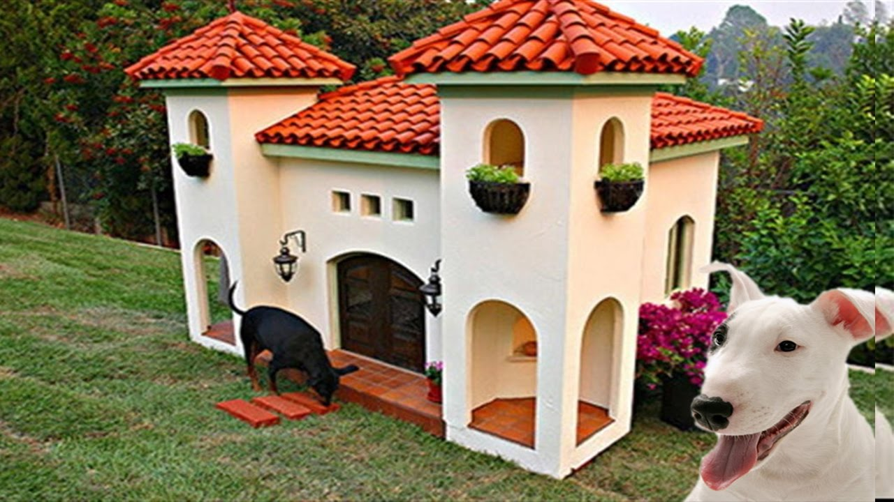 die 5 luxuriösesten hundehütten! - youtube