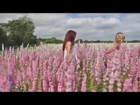 Flower Fields of Dreams with Belle & Bunty
