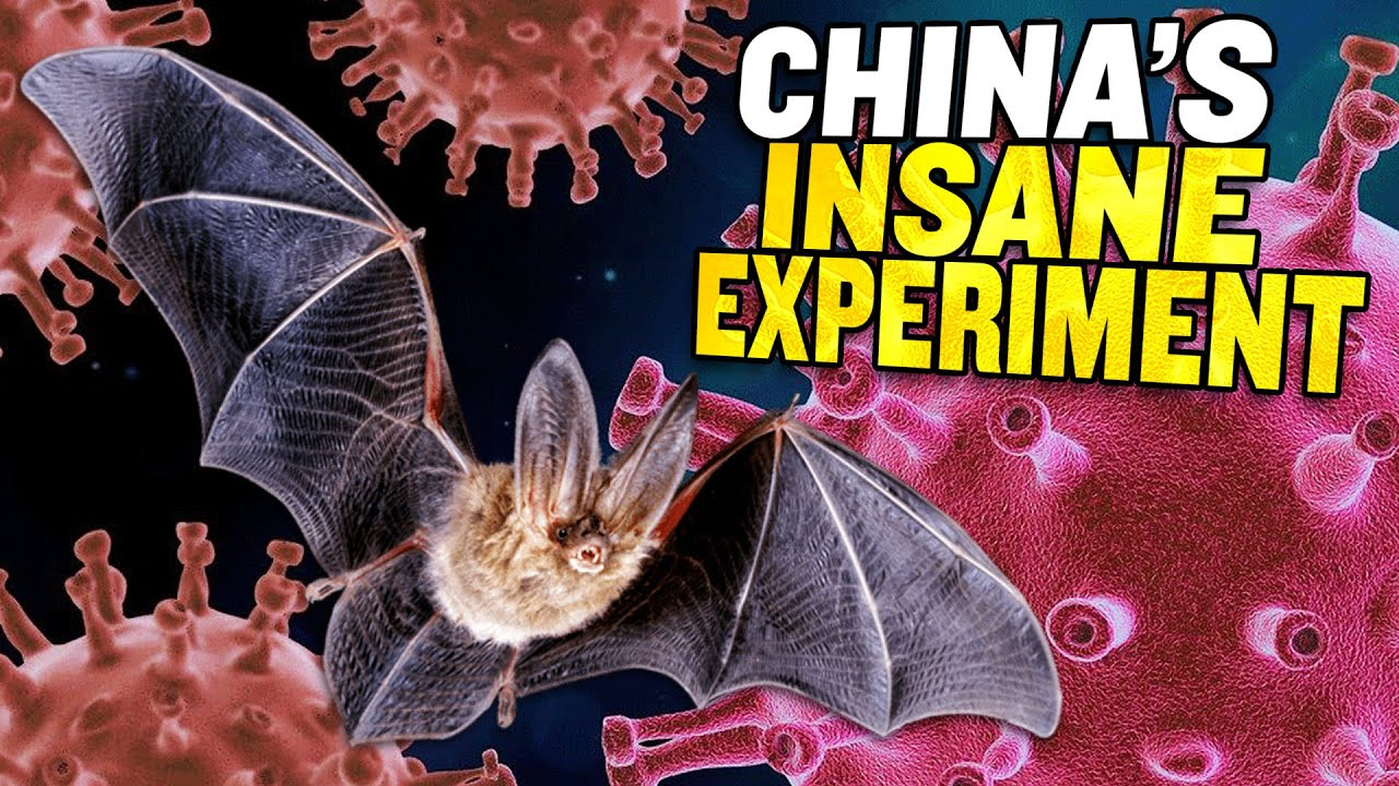 Download Uncovered: China's Plan to LEAK Coronaviruses into the Wild