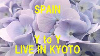 【超絶スキャット】SPAIN SCAT SOLO - Y to Y LIVE IN KYOTO