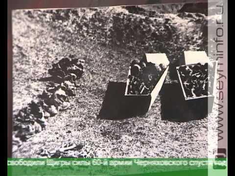 4 февраля - день освобождения Щигров