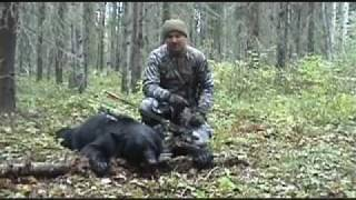 Bear Hunting, Archery Bear Hunts, Bow Hunting Bears, Canada Bear Hunting