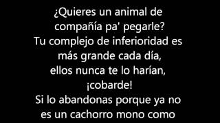 Watch Porta Animales Racionales video