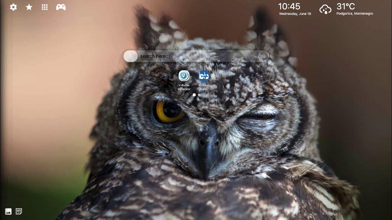 Funny Owl Wallpaper Hd