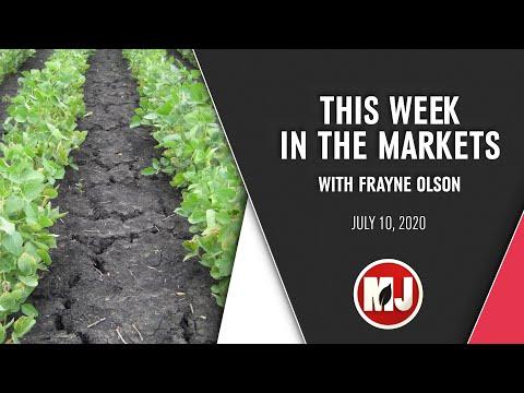 Market Analysis   Frayne Olson   July 10, 2020