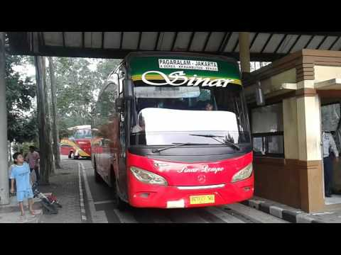 Adu Telolet Bus Sinar Dempo VS Minanga Express