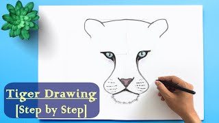 ✅ How to Draw a Tiger step by step easy ॥ Tiger Drawing for Beginner