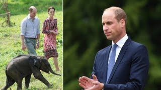 Kate Middleton news: Prince William's tour of Africa on September 24 without Kate