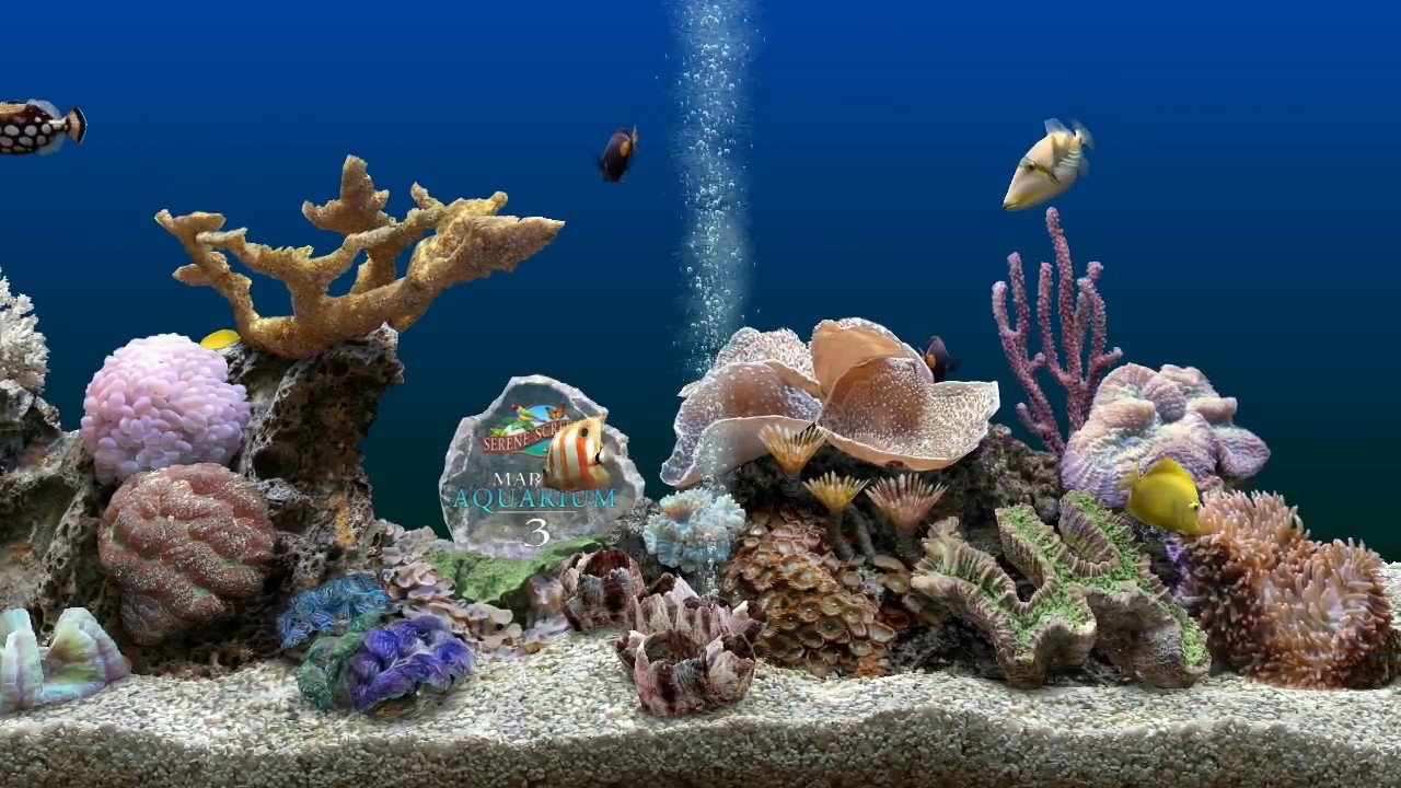 3d aquarium screensaver for iphone