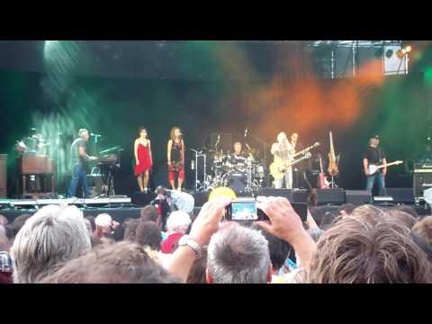 Wolfgang Ambros Live Donauinselfest 2013 HD (fast Komplett)